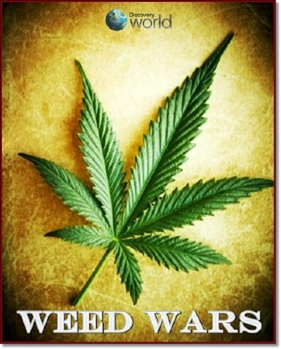 Марихуана в законе / Weed Wars [01x01-03] (2012) HDTVRip