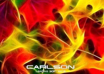 Carlson 2013