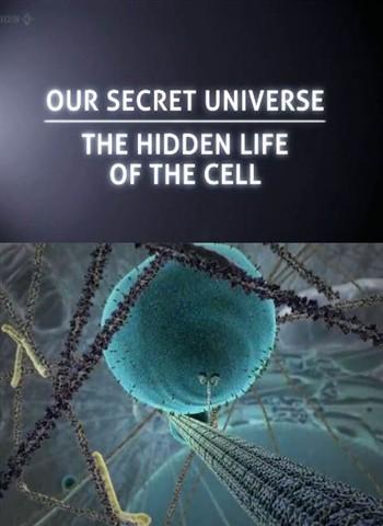 Внутренняя Вселенная: Тайная жизнь клетки / Secret Universe: The Hidden Life of the Cell (2012) HDTVRip 720p
