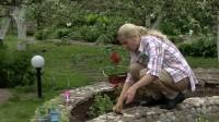 Ваш сад и огород: Дизайн цветников и посадка цветов своими руками - все 10 серий (2011) DVDRip