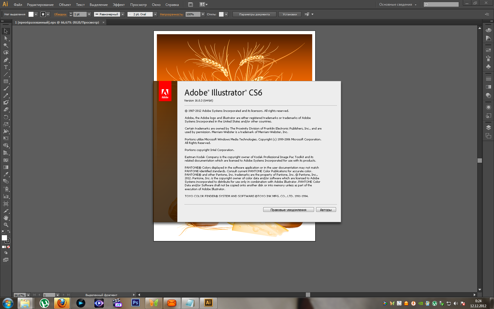 Adobe Illustrator CS6 v.16.0.3 ML/Rus