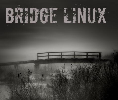 Bridge Linux 2012.5 (4-ре рабочих стола для Arch) [i686 + x86-64] (4xDVD+4x ...