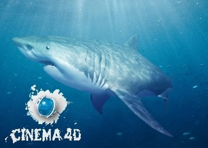 Maxon Cinema 4D R14 Content Library
